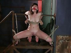 Here's pretty Sahara Rain, a cute wench with small mambos and a very taut cunt. Sahara has been fastened by that wooden structure, ball gagged and her thighs fastened wide open. I begin rubbing her twat with a vibrator and that babe burst with pleasure like a fucking whore. Think I should now stuff her taut twat with something.