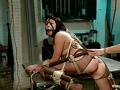 Coral aorta is a breasty dark brown hair milf who enjoys being aroused while she is bound up in bondage devices. She can't live without having her mouth gagged with a ball as her beautiful goddess takes advantage of her position. The hot blonde milf Lorelei Lee can't live without gratifying her sex slave with a transparent a-hole plug.