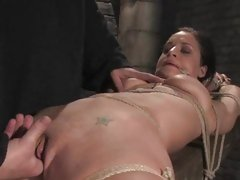 Servitude babe Mia Bangg is bound up and tormented