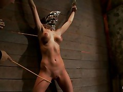 Watch this slut as that hottie is tied on the wall and has a bag on her head. This babe is suffocating slowly and to increase the pleasure of being dominated they castigate her sexy body by thrashing her on the thighs and belly with a stick. After thrashing that hottie acquires a vibrator on her fur pie and moans with pleasure and pain. She's so sexy with those clamps on her hard nipples and, will they add greater amount weights?
