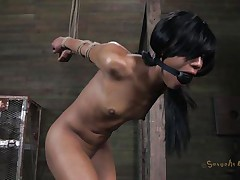 Isn't Nikki a fascinating beauty and hawt too? She's tied, blindfolded and face hole gagged with a ball. A big black male pumps her from behind and rips Nikki's pussy before taking care of her mouth. His white buddy comes to aid him chastise this floozy and fucks her ass from behind also whilst the black one unfathomable mouths her