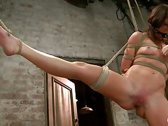 With weights added to her large nipples, sexually excited milf Mia Gold is tied up and has one leg in the air for a better twat domination. Having her face gap gagged, this playgirl can only moan. Her dominatrix sticks a large marital-device in that wet twat of hers and a fake penis on her clit to drive her crazy. Will this playgirl cum soon?
