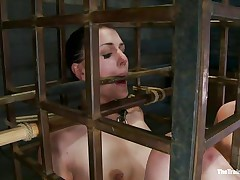 She was a bad girl and they had to put her in a cage and reeducate her. Now this babe is receiving what this babe deserves, a hard spank and some well deserved humiliation. Of course her bald cum asking cunt is not to be neglected and the executor uses a fake penis to taunt her a bit. Wanna this babe the rest of it?