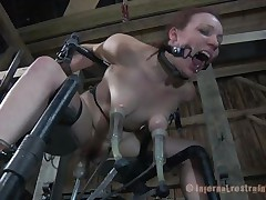Maggie is a pleasing fragile playgirl with milky white skin and a very fragile body. That babe is tied on metal bars and has a brutal sex machine behind her that drills her pussy. Her love melons are tortured too and sucked by the rock hard suckers. Do you think this babe can handle the hardness of so much iron? Let's find out!