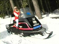 Coldresistant sweetheart strips on snowmobile